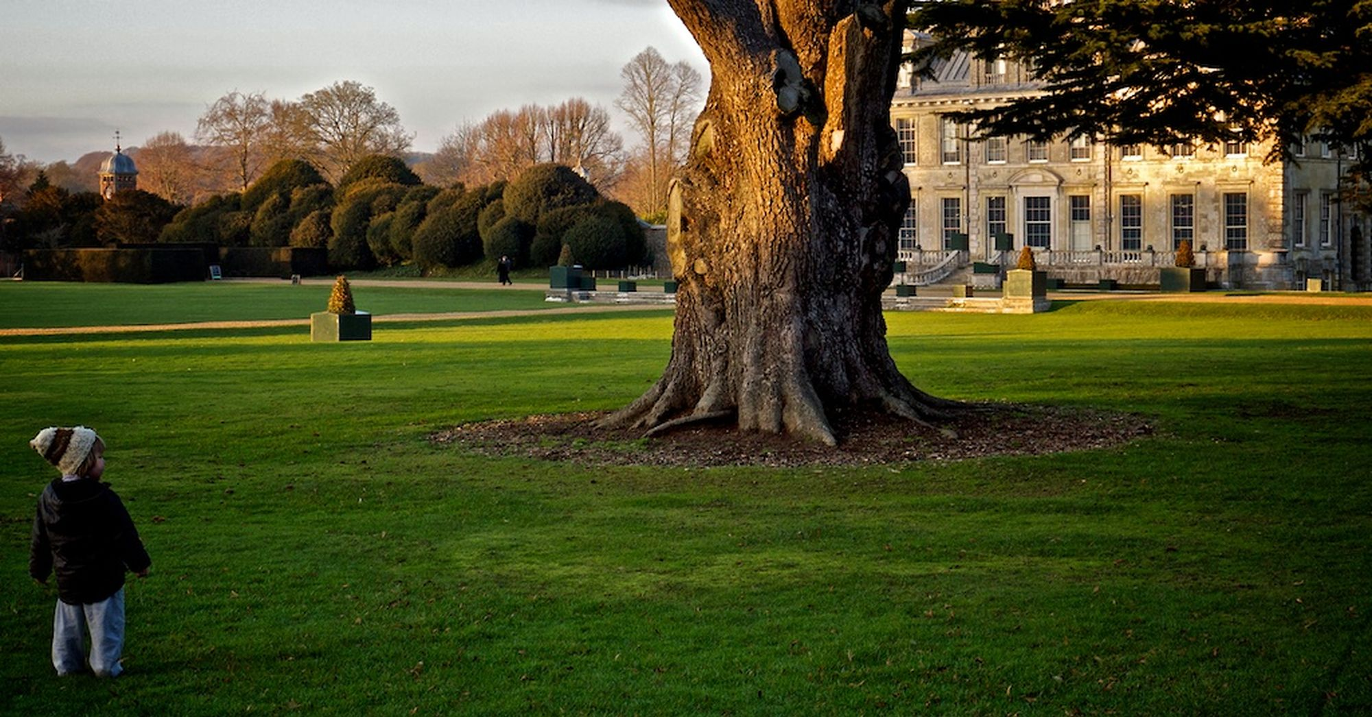 digby & cedars at kingston lacy