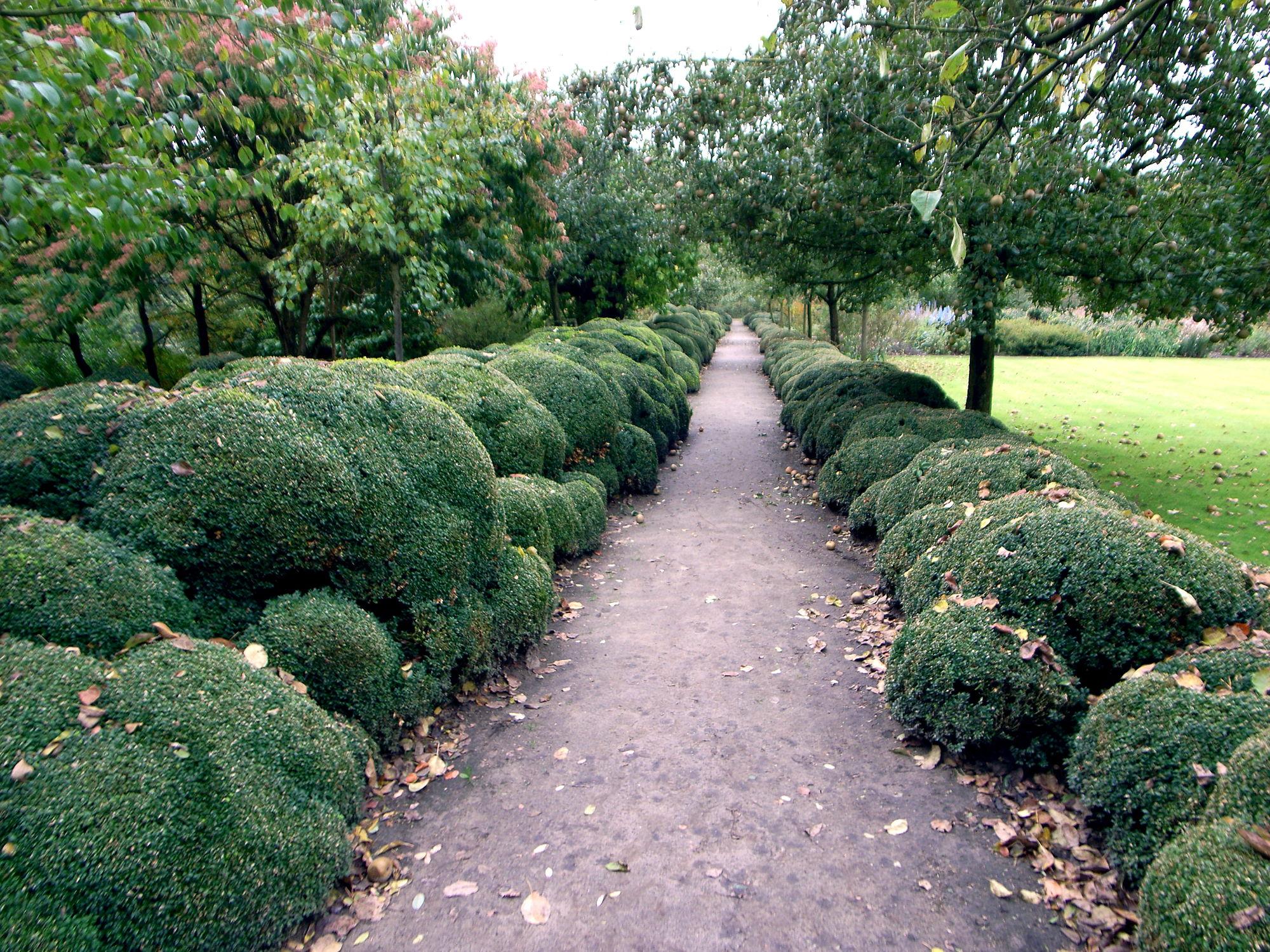 Niwaki Jacques Wirtz Garden