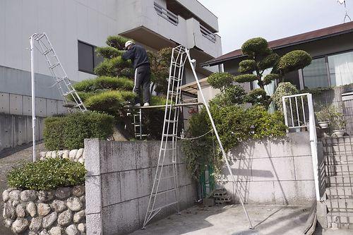 3 tripod ladders