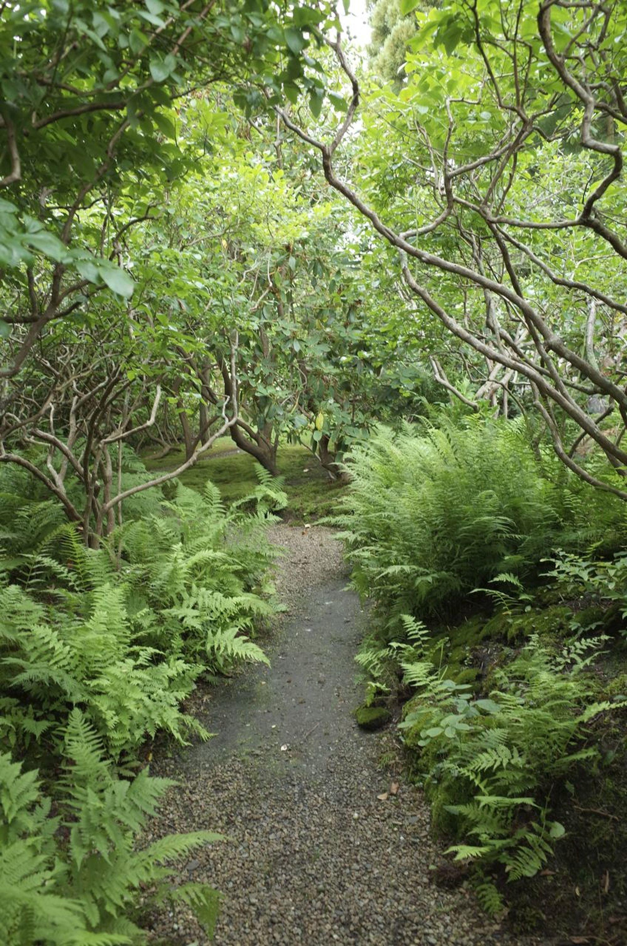 Sakonnet Garden 2