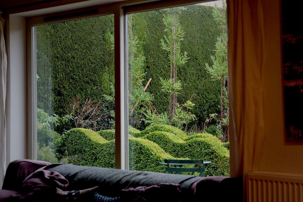 jake's garden