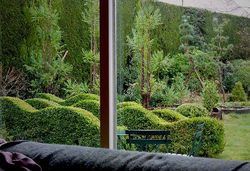jake's garden 2