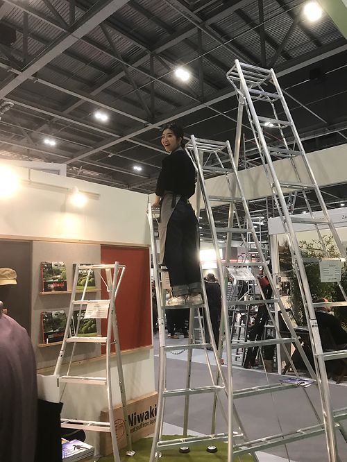 Yuri up a Niwaki Tripod Ladder