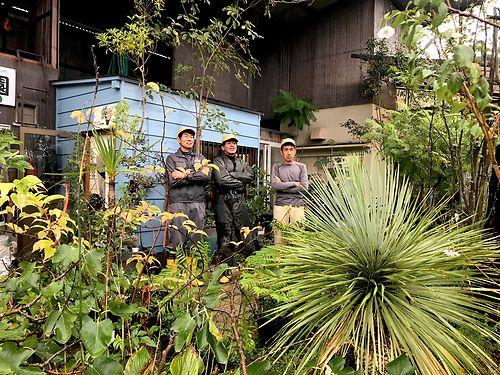 Furukawa brothers / Niwaki caps