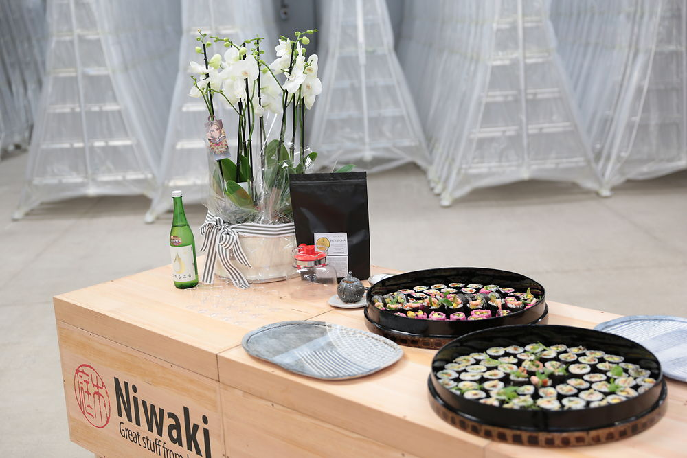 Niwaki Open House Spring Ladder Event and Short Film Screenings Fri 20th and Sat 21st April