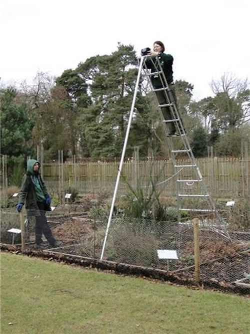 rhs tripod ladder