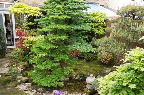 Sievert garden