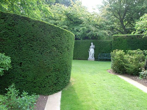cottesbrooke yew
