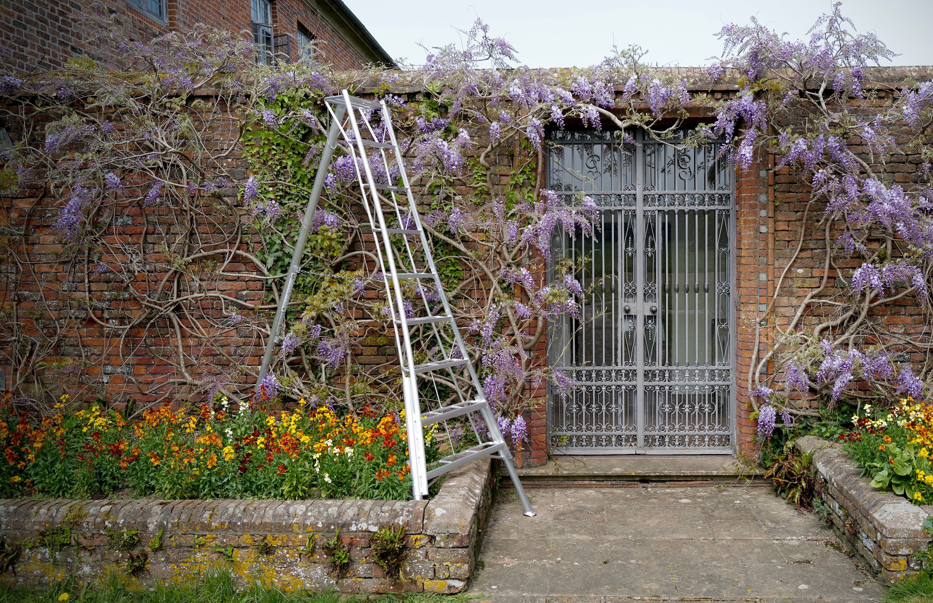 The Niwaki EN Pro Adjustable Tripod Ladder