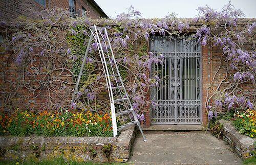 Niwaki Tripod Ladders