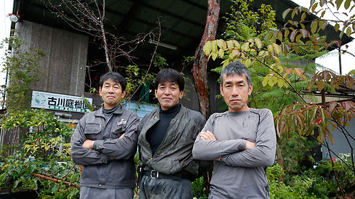 "Watch our short film: ""The Niwaki Story"""